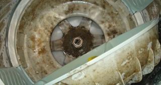 Thợ vệ sinh máy giặt tại Dĩ An - Bình Dương